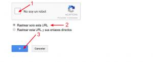 google ha indexado correctamente tu web